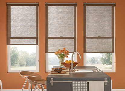 Light Filtering Window Treatments Shapeyourminds Com