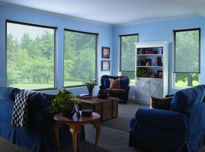 timber solarvue solar shade - blocks 86 percent of light